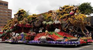 Обои Штаты Леопарды Тигры Попугаи Калифорния Дизайн Pasadena Природа