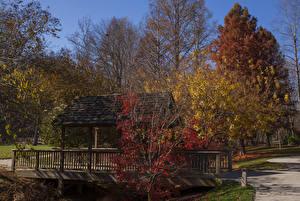 Картинка США Парки Осенние Мосты Деревья Gibbs Gardens