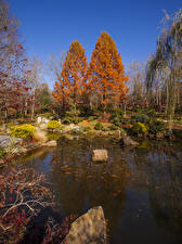 Фото США Парки Осень Пруд Камни Деревья Gibbs Gardens Природа
