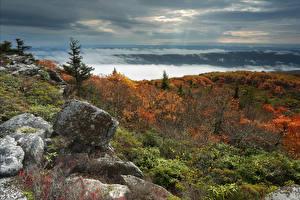 Картинки Штаты Камень Осень Пейзаж Холмы Кусты West Virginia