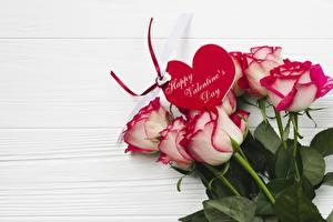 Фотография День святого Валентина Розы Сердце Цветы