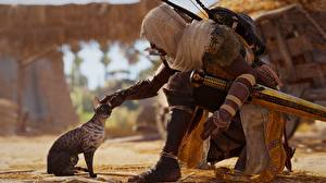 Обои Воители Коты Assassin's Creed Origins Капюшон 3D_Графика