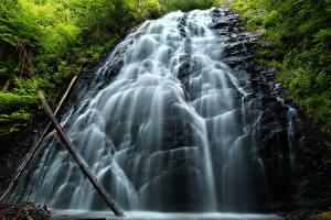 Фотография Водопады Скала Ветки