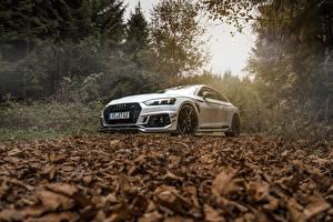 Фотография Ауди Белый Листья Купе ABT RS5-R Авто