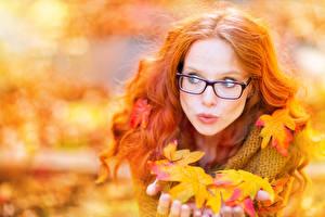 Картинка Осенние Рыжая Очки Листва Волосы Девушки