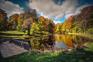 Обои Осенние Америка Парки Река Мосты Дерево Траве Northport Michigan Природа