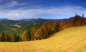 Картинка Осенние Украина Гора Луга Леса Пейзаж Закарпатье Природа