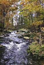 Картинки Осенние Водопады Камень Деревья Природа