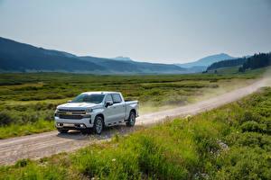 Фотография Chevrolet Пикап кузов Белых 2019 Silverado High Country Crew Cab Автомобили