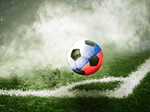 Фотографии Футбол Мяч Трава Спорт