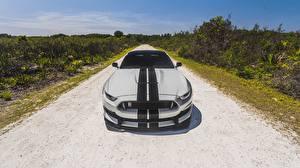 Фотографии Ford Спереди Полосатая Mustang Shelby GT350 автомобиль