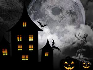 Фотографии Хэллоуин Летучие мыши Луной Скелет