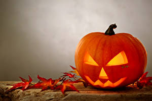Фотография Праздники Хеллоуин Тыква Листва