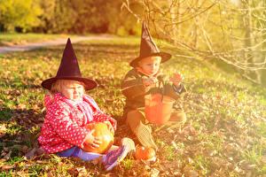 Картинка Праздники Хеллоуин Тыква 2 Мальчики Девочки Шляпа Сидящие Ребёнок