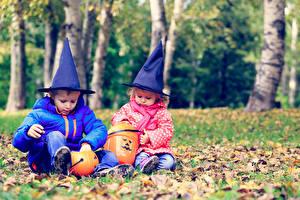 Фотография Праздники Хеллоуин Тыква 2 Мальчики Девочки Шляпа Сидящие