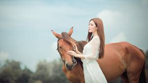 Фотографии Лошади Азиаты Шатенка Девушки Животные