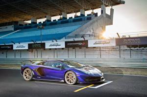 Фотографии Lamborghini Фиолетовых 2019 Aventador SVJ автомобиль