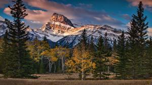 Обои Горы Канада Осенние Деревья Природа