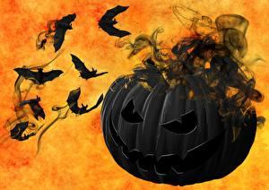 Картинки Тыква Летучие мыши Хэллоуин Черный