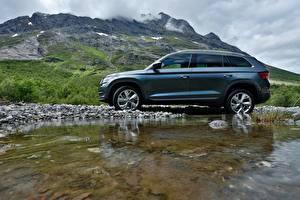 Фотографии Шкода Сбоку Универсал SUV 2016 Kodiaq