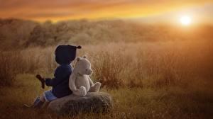 Картинка Игрушки Рассветы и закаты Мишки Дети