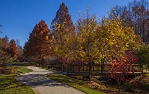 Фотографии Штаты Осенние Сады Мосты Деревья Gibbs Gardens