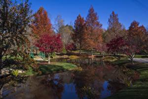 Картинки США Осенние Сады Пруд Деревья Gibbs Gardens Природа