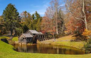 Фотография США Осенние Реки Деревьев Водяная мельница Mabry Mill Природа