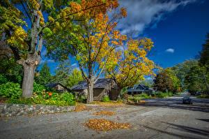 Фотографии США Дома Дороги Осенние Улиц Деревьев Лист Northport Michigan Города