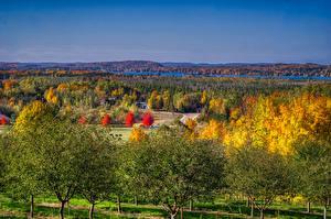 Фотография Штаты Пейзаж Осенние Мичиган Деревья Leelanau Природа