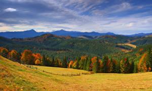 Обои Украина Горы Леса Осень Луга Пейзаж Закарпатье Природа