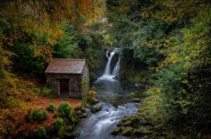 Обои Великобритания Осень Водопады Леса Дома Rydal Cumbria Природа
