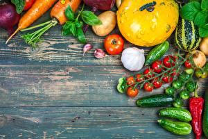 Фотография Овощи Помидоры Огурцы Чеснок Продукты питания