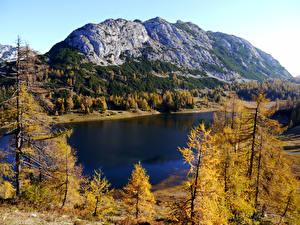 Фотография Австрия Осень Горы Озеро Деревья Tauplitz Styria Природа