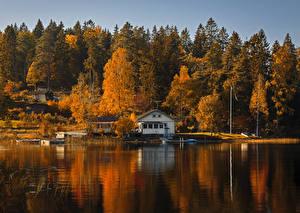 Обои Осень Реки Причалы Здания Деревья Природа