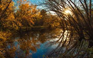 Фотографии Осенние Реки Деревьев Лучи света Природа