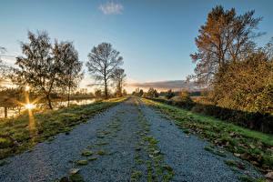 Фотография Осенние Дороги Рассветы и закаты Деревья