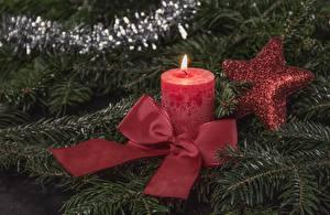 Обои Новый год Свечи Огонь Праздники Бантик Звездочки Ель Животные картинки