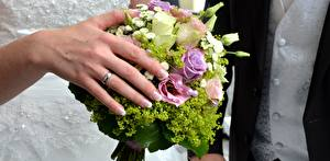 Обои Вблизи Пальцы Букеты Руки Кольцо Свадьба