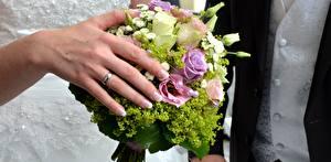 Обои Крупным планом Пальцы Букеты Руки Кольца Свадьба