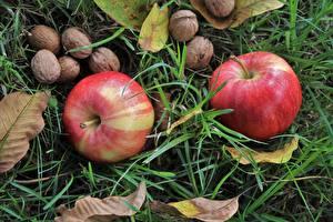 Картинка Вблизи Фрукты Орехи Яблоки Грецкий орех Траве Листья Продукты питания