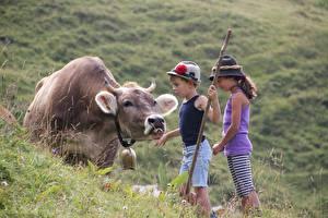 Фото Корова Трава Альпы Мальчики Девочки Шляпа Дети