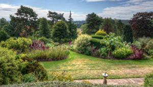 Картинка Англия Сады Дерева Кустов HDR Dorothy Clive Gardens Природа