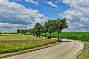 Картинки Поля Дороги Небо Деревья Облака Природа