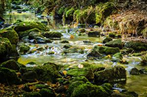 Картинка Германия Осень Реки Камень Мох Silberbach river Природа