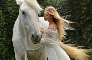 Фото Лошади Двое Блондинка Белый Животные Девушки