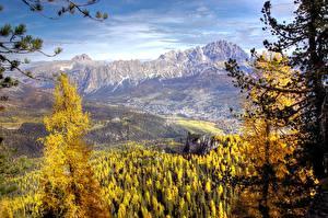 Фотографии Италия Горы Лес Пейзаж Ель Cortina d'Ampezzo Природа