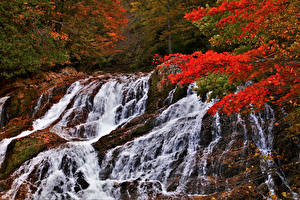 Обои Япония Осенние Водопады Takayama Gifu pref. Природа