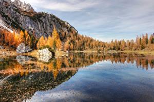 Картинка Озеро Горы Леса Осенние Альпы Деревья Природа