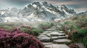 Картинки Горы Камни Снег Трава Тропа Природа